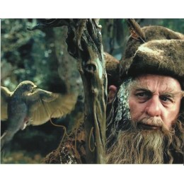 SYLVESTER McCOY SIGNED THE HOBBIT 8X10 PHOTO (3)