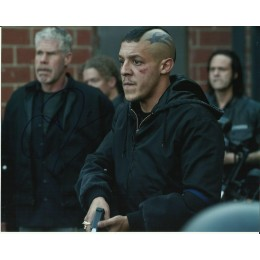 THEO ROSSI SIGNED SONS OF ANARCHY 8X10 PHOTO (1)